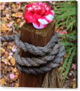 Rope Pillar And Camellia Canvas Print