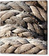 Ropes. Canvas Print
