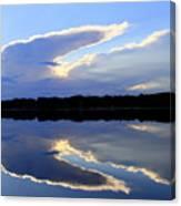 Rorschach Reflection Canvas Print