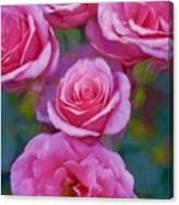 Rose 344 Canvas Print