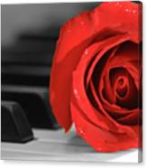 Rose And Piano Canvas Print