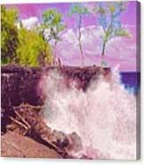 Rose Colored Splash At Mackenzie Canvas Print