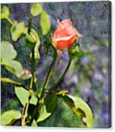 Rose Elegance Art Canvas Print