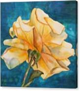 Rose From Behind Canvas Print