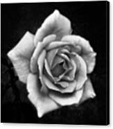 Rose In Mono. #flower #flowers Canvas Print