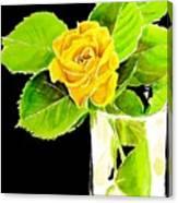 Rose In Vase Canvas Print