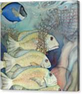 Rose Island II Canvas Print