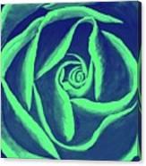Rose Mint Canvas Print