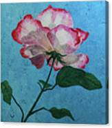 Rose On Blue Canvas Print