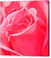 Rose Petals - 1 Canvas Print