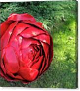 Rose Sculpture Canvas Print