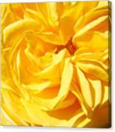 Rose Spiral Flower Garden Baslee Troutman Canvas Print