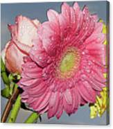 Rose With Gerbers Canvas Print