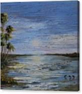 Roseate Beach Canvas Print