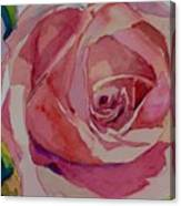 Roses And More  Canvas Print