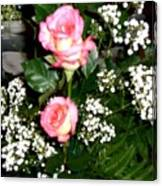 Roses Are Truly Beautiful  Canvas Print