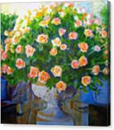 Roses At Table Bay Canvas Print