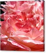 Roses Cinnamon Pink Rose Flowers 3 Rose Garden Art Baslee Troutman Canvas Print