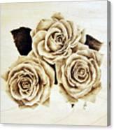 Roses Canvas Print