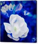 Roses In Bllue Canvas Print