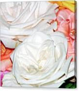 Roses Multi Color Canvas Print