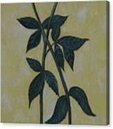 Long Stem Roses Canvas Print