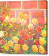 Roses The Gift Of Lovers. Canvas Print