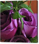 Roses Up Close Canvas Print