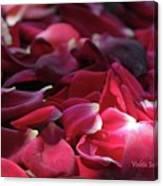 Rose Waves Canvas Print