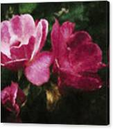 Roses With Texture Canvas Print