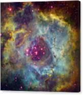 Rosette Nebula Ngc 2244 In Monoceros Canvas Print
