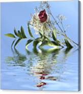 Rosy Reflection  Canvas Print