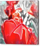 Rosy Swirl Canvas Print