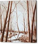 Rotary Bog Canvas Print
