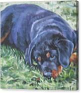 Rottweiler Puppy Canvas Print