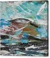 Rough Landing Canvas Print
