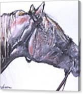 Rough Ride Canvas Print