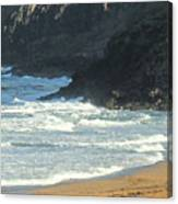 Rough Shores Canvas Print