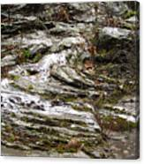 Rough Timeworn Rhythm Along The Kaaterskill Creek Canvas Print