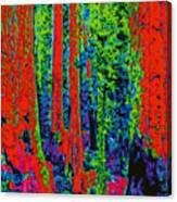 Rough Trees D5b Canvas Print