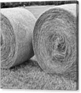 Round Hay Bales Black And White  Canvas Print