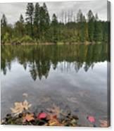 Round Lake At Lacamas Park In Fall Canvas Print