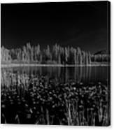 Round Lake State Park Idaho Canvas Print