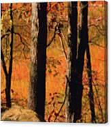 Round Valley State Park 3 Canvas Print