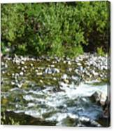 Rounded Rocks In A Rushing River Canvas Print