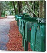 Row Of Green Mailboxes7426 Canvas Print
