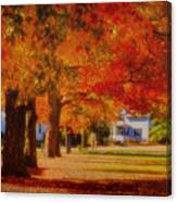 Row Of Maples Canvas Print