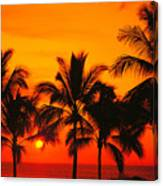 Row Of Palms Canvas Print