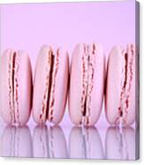 Row Of Pink Macaron Cookies Canvas Print