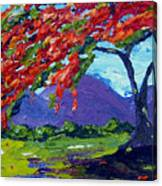 Royal Poinciana Palette Oil Painting Canvas Print